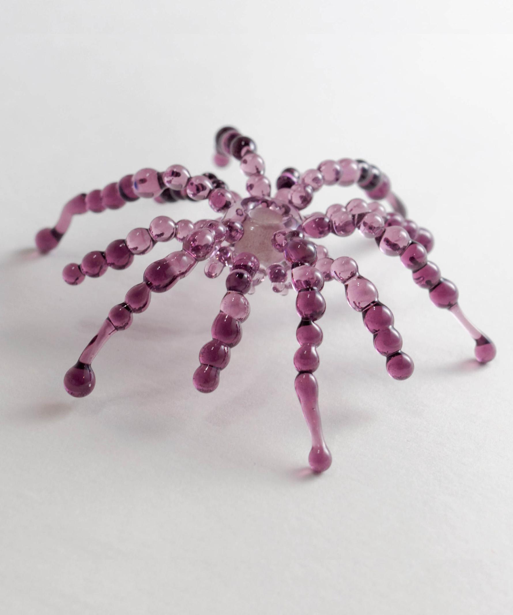 Featured_Spider1